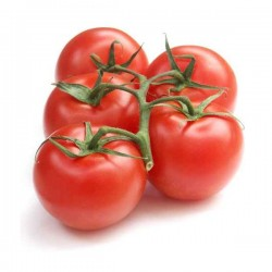 Tomate grappe Extra 1kg